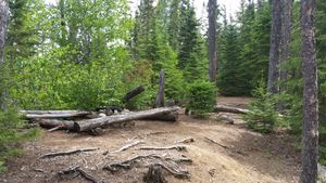 Campsite on Muskeg Lake