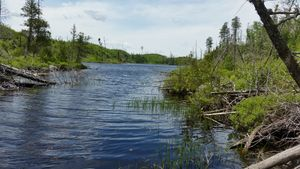 Portage into Long Island from Muskeg
