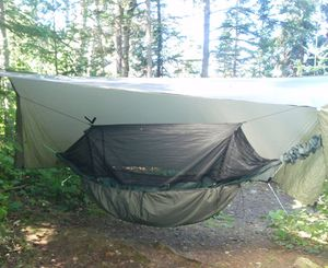 Hammock Knife Lake Site 1255 Sept 2015