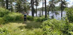 North_Cross_Lake_-_Site_26_-_Tent_Pad.jpg