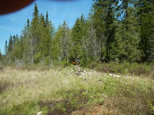 2015 Brule North Loop Portage End at North Grassy Lake