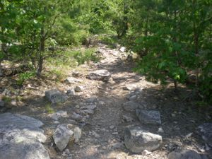 Path to campsite