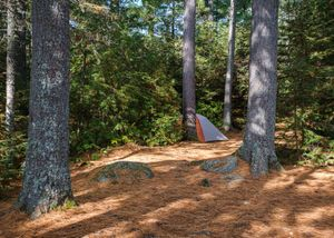 West Pike site 727 tent pad, one of many