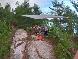 Sea Gull Camp 452