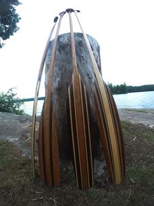 Some of my paddles on McIntosh Lake