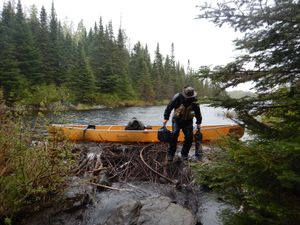 Portaging over a beaver dam
