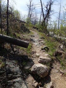 Jasper Lake to Alpine Lake (trail maintenance)