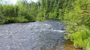 Royal River Portage