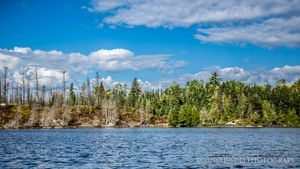 Pagami_Creek_Wildfire_-_Hudson_Lake_BWCA_MN_140902-173.jpg