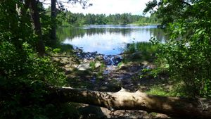 basswood portage - one of the spur trails
