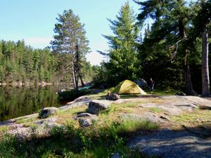 Angleworm narrows campsite