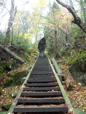 Stairway portage