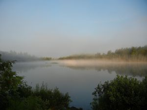 Birch Lake Morning Fog