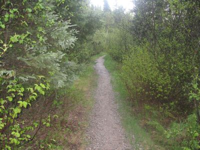 Trail from parking lot to Beaverhouse put-in