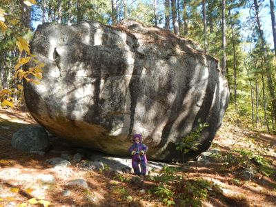 Finger Lake island boulder