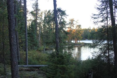 Slim lake campsite